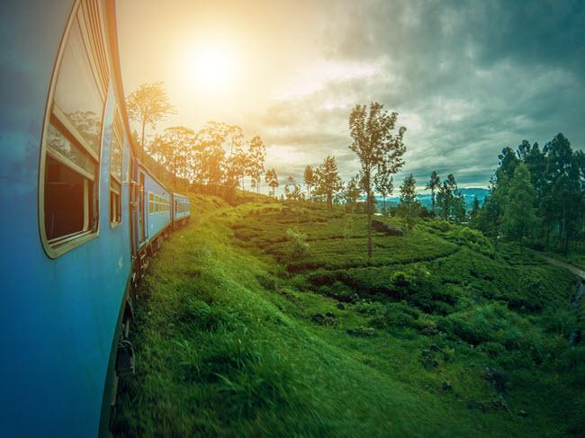 13 Day Luxury Sri Lanka  Yoga & Wellness Tours