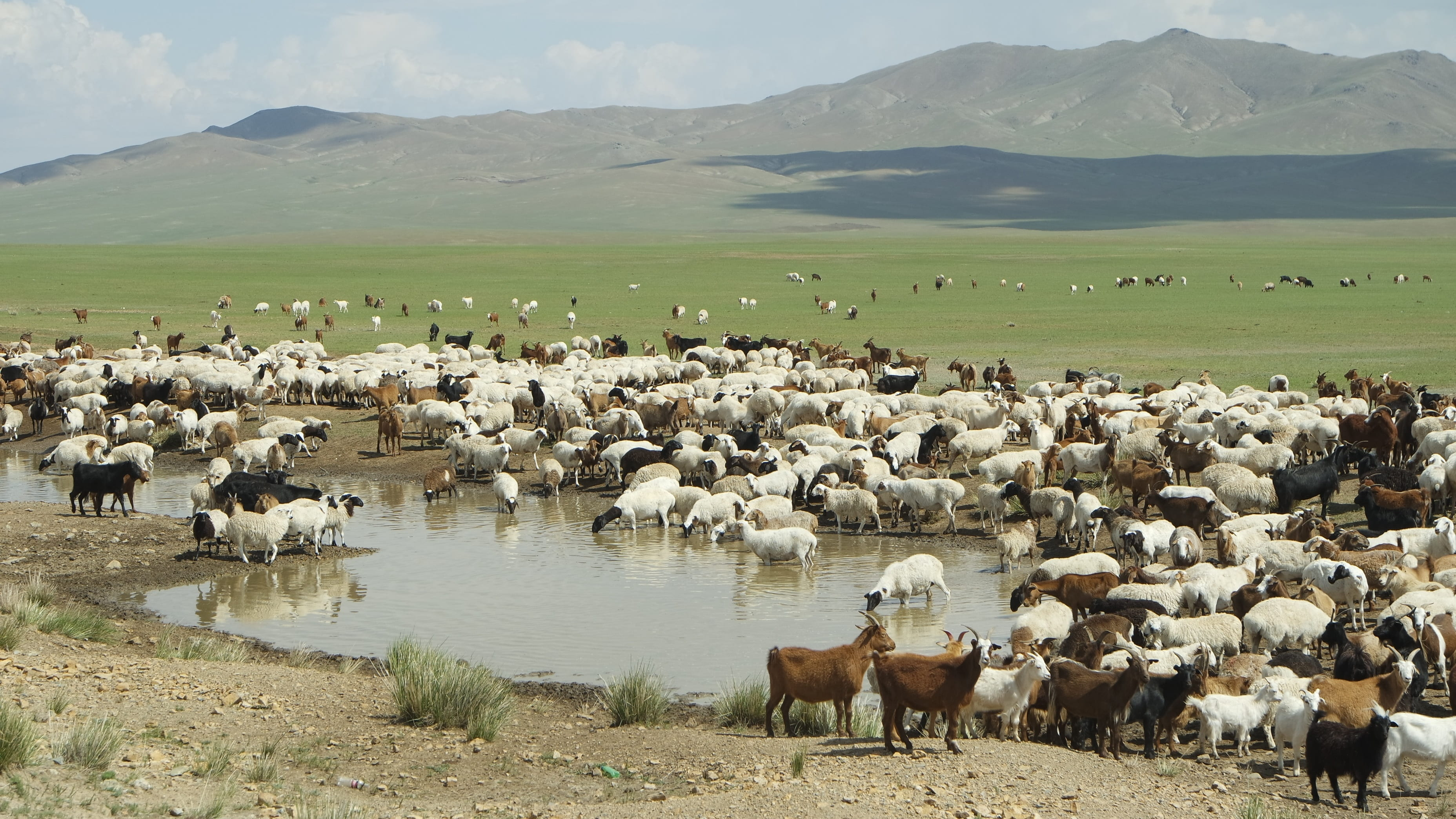 13-Day Mongolia Tour: A Land of Mystic Serene Steppes