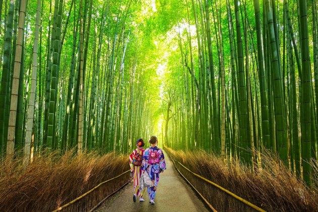 8 DAY LUXURY JAPAN HONEYMOON PACKAGE